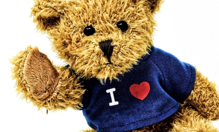 teddy-3583714_1920